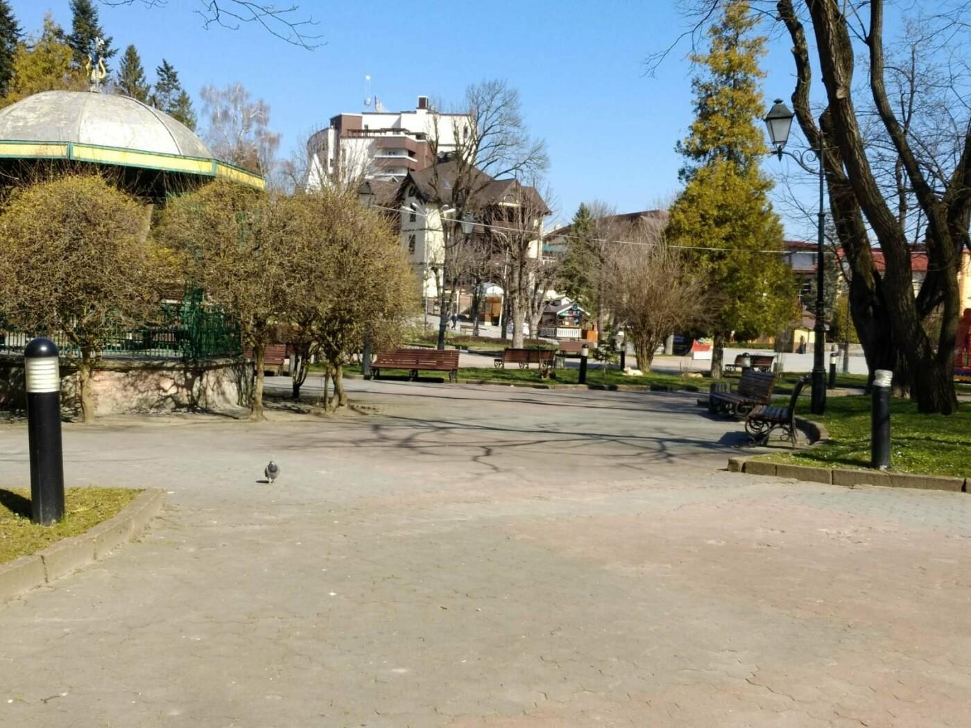 Трускавецьким голубам COVID-19 не страшний: Фотоогляд карантинного парку, фото-8