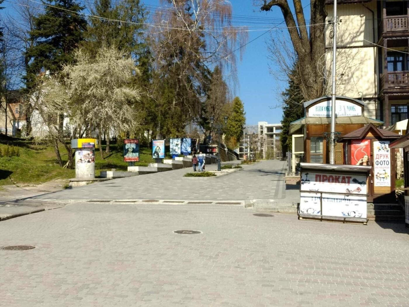 Трускавецьким голубам COVID-19 не страшний: Фотоогляд карантинного парку, фото-9