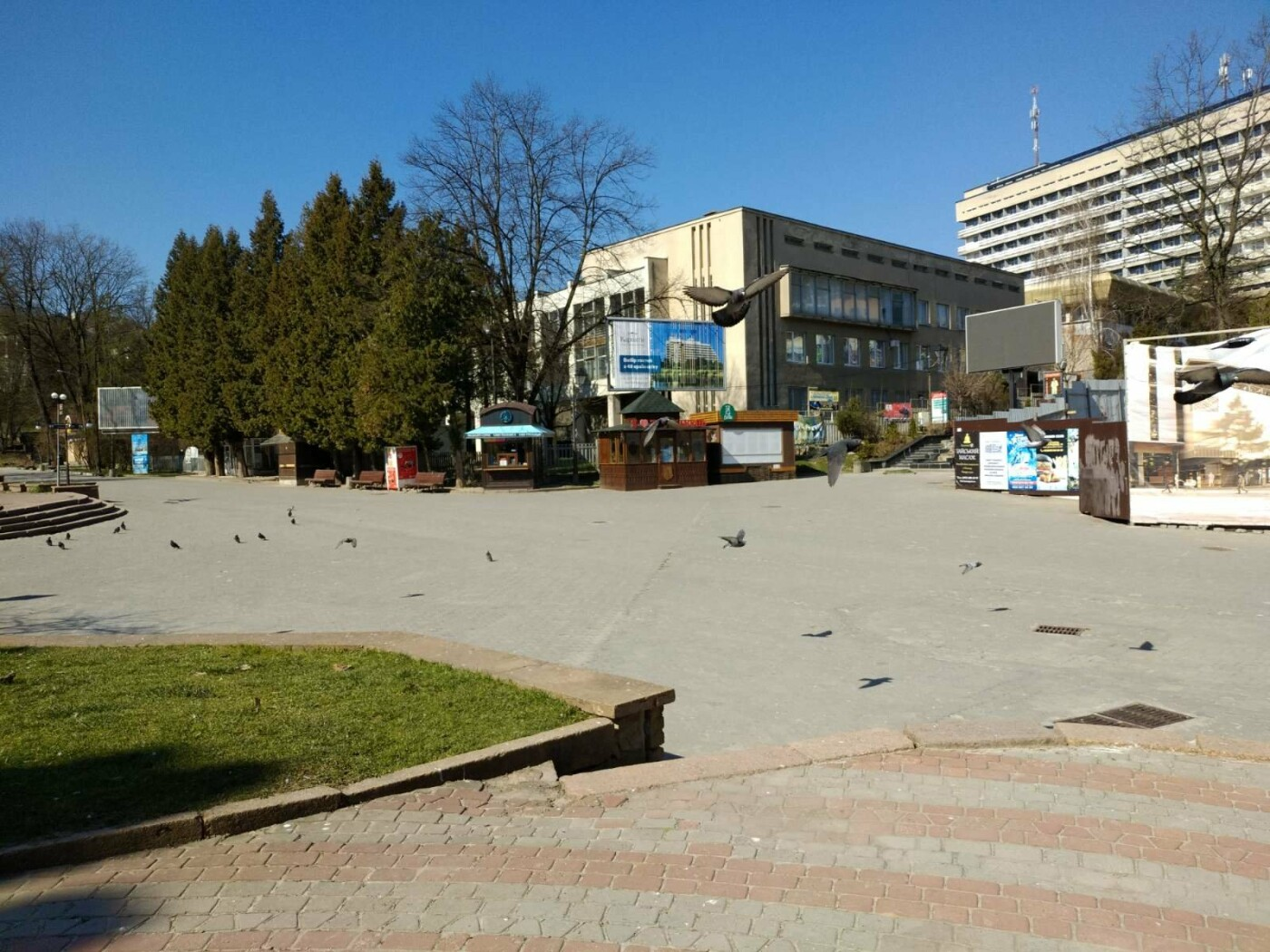Трускавецьким голубам COVID-19 не страшний: Фотоогляд карантинного парку, фото-3