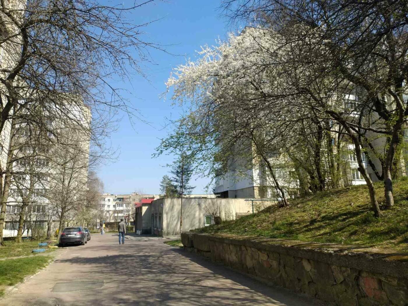 Трускавець розквітає: Фото трускавецької краси, фото-7, Фото - 03247.com.ua