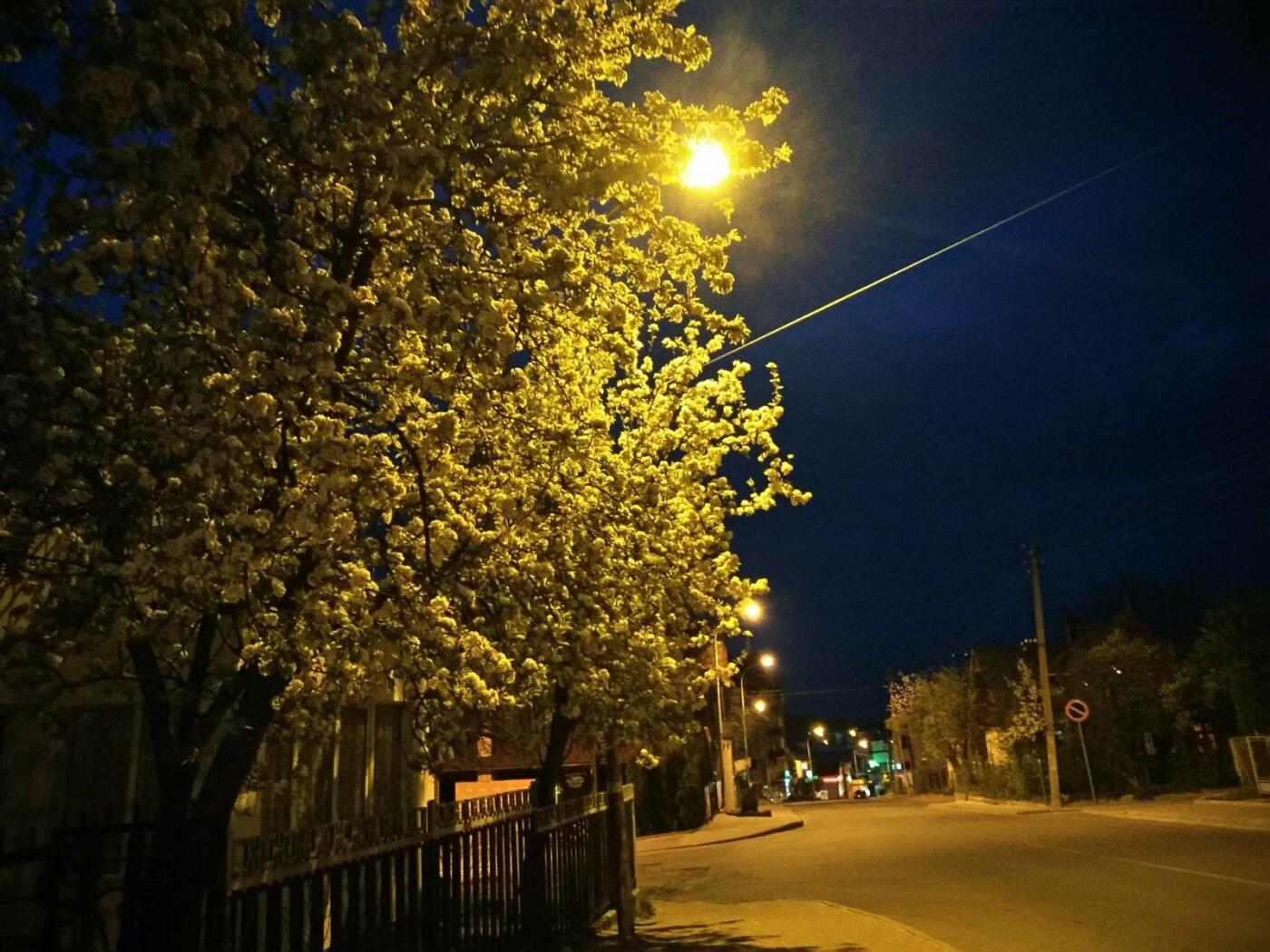 Дивовижний Трускавець: вечірній фотоогляд центральної частини міста-курорту, фото-8, Фото - 03247.com.ua