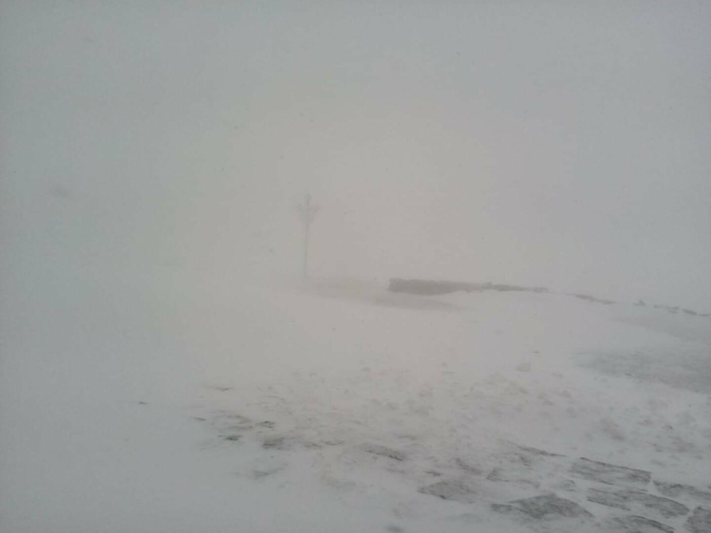 Карпати знову засипало снігом, фото-1