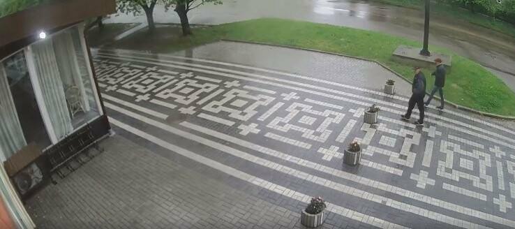 У Дрогобичі посеред вулиці вкрали вазон з клумби. Хто впізнає злодіїв? (Відео), фото-1