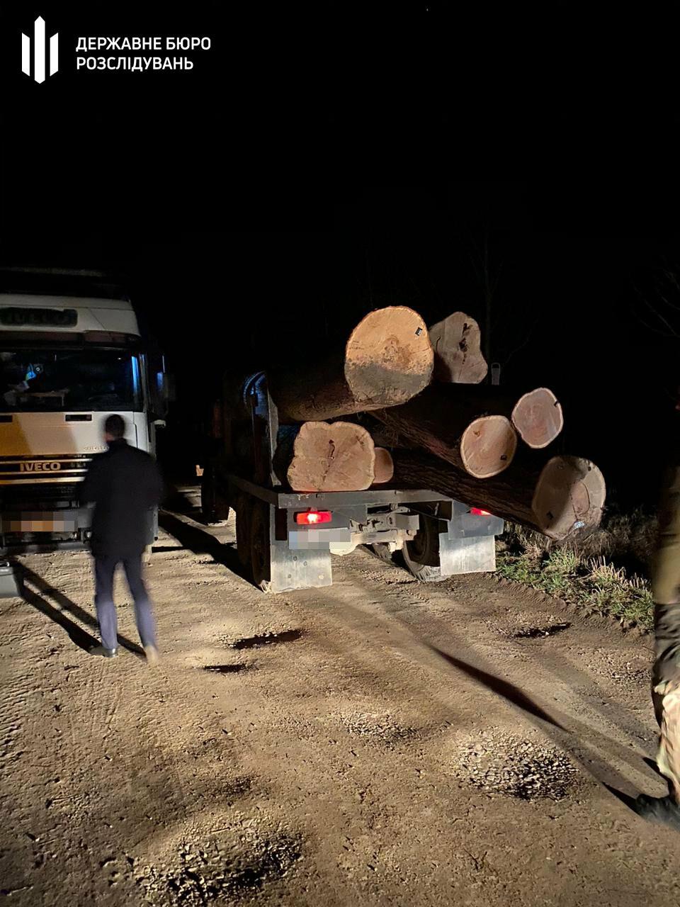 На Львівщині незаконно вирубували дуби, фото-1