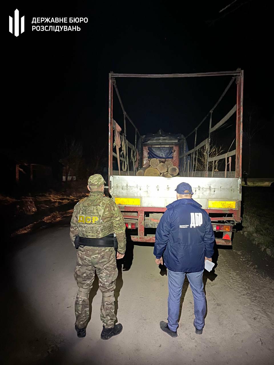 На Львівщині незаконно вирубували дуби, фото-3