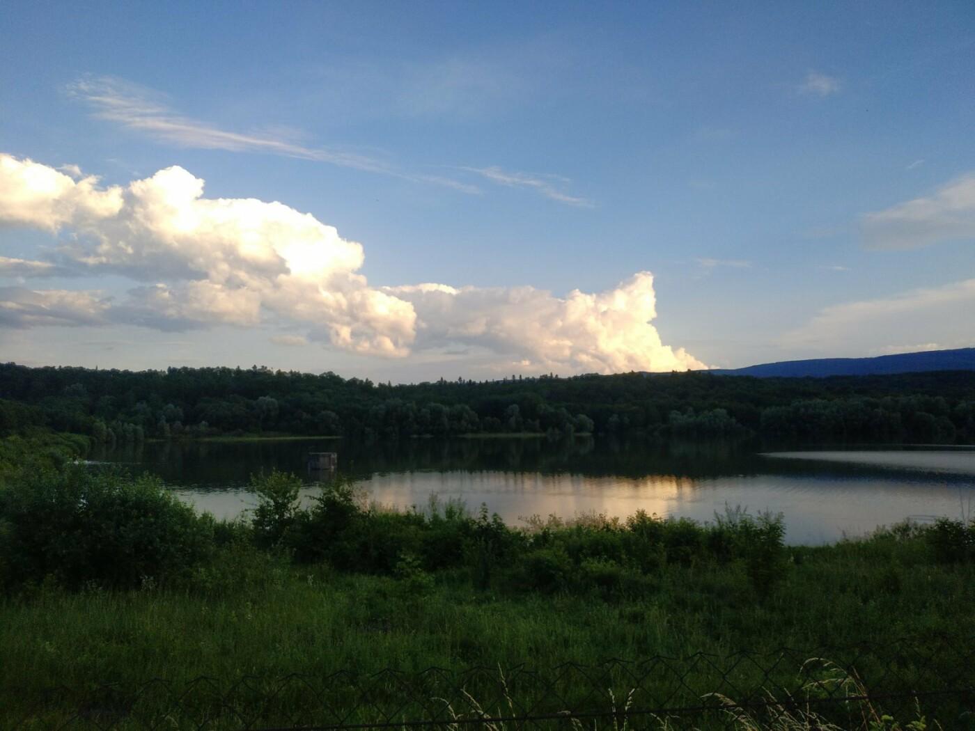 Повноводне трускавецьке озеро манить красою (ФОТО), фото-4, фото - 03247.com.ua