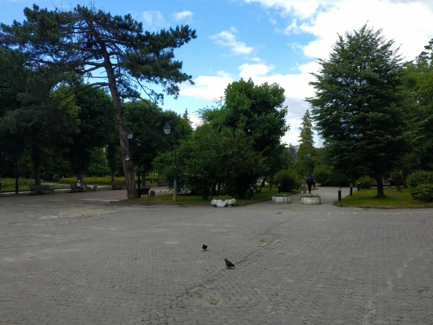 Трускавець оживає: фото курортного парку, фото-3