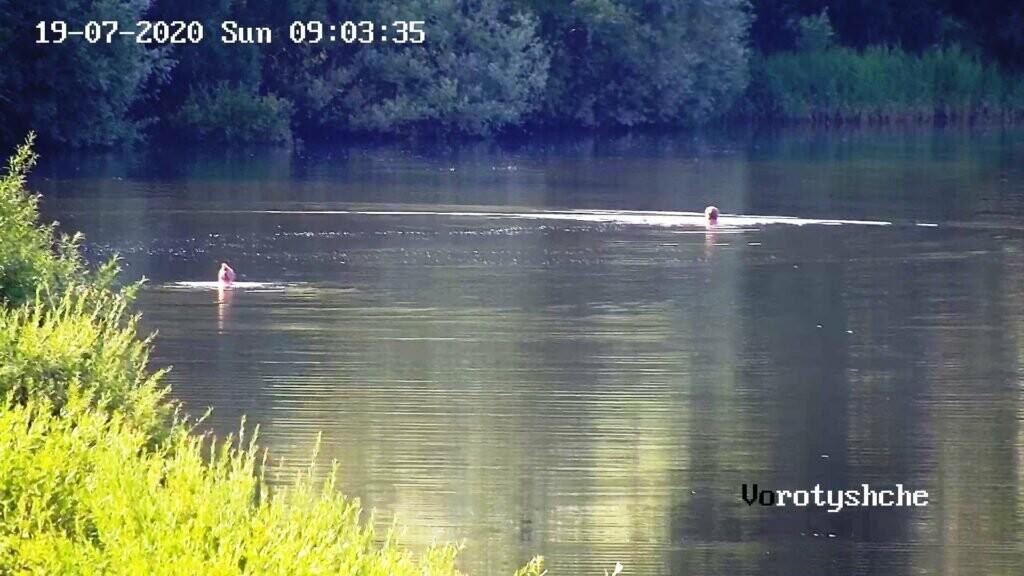 Любителів купатись на питному озері штрафуватимуть, фото-1
