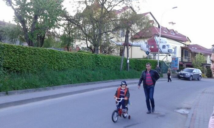 Живі паркани у Трускавці: чим вони особливі?, фото-1