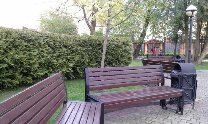 Живі паркани у Трускавці: чим вони особливі?, фото-8