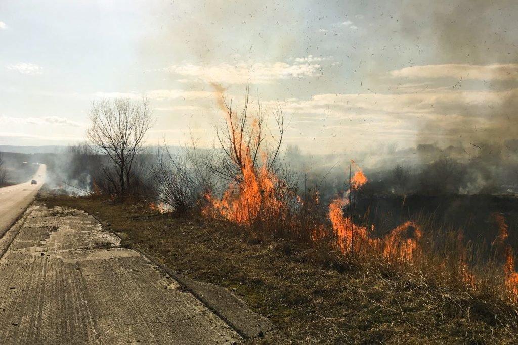 Поблизу Трускавця палають поля. ФОТО. ВІДЕО, фото-1, vartonews.com.ua