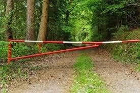 Відтепер у ліс зась: на Львівщині заборонили відвідувати ліси, фото-1