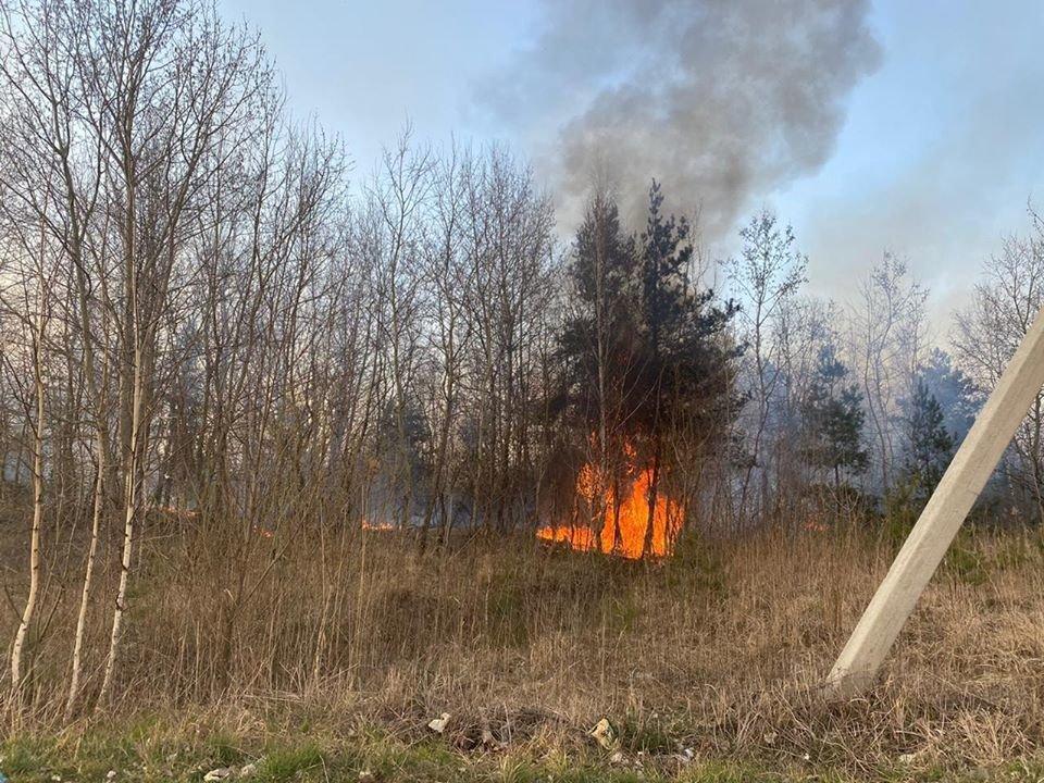 Спалахнула масштабна пожежа на Новояворівському сміттєзвалищі, фото-5, Фото - Юрій Холод