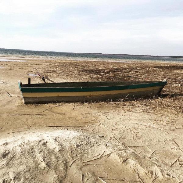 Річки та водойми України критично обміліли, фото-1