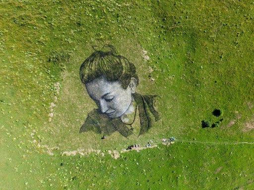 Художник малює біоматеріалом картини площею 3000 кв. м.  Фото вражають, фото-9, Гійом Легро