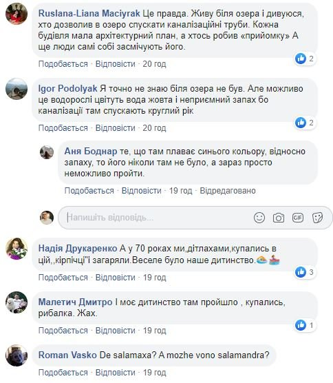 Мешканці скаржаться на стан озера у Дрогобичі (Фото), фото-4