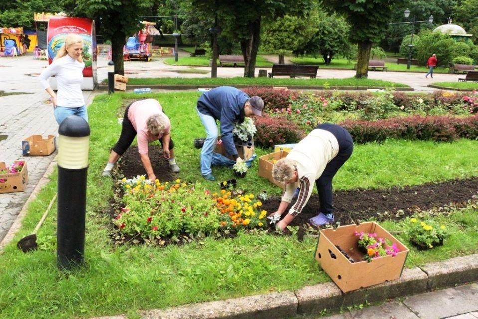 Квітковий Трускавець: місто-курорт озеленюють (Фото), фото-3, фото - Трускавецька міська рада