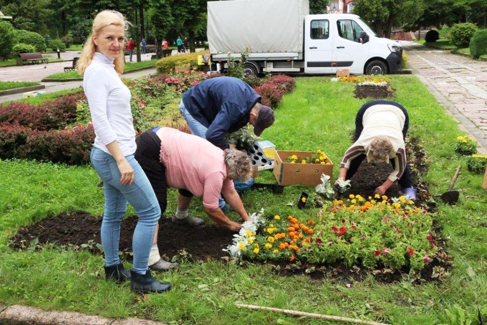 Квітковий Трускавець: місто-курорт озеленюють (Фото), фото-2, фото - Трускавецька міська рада