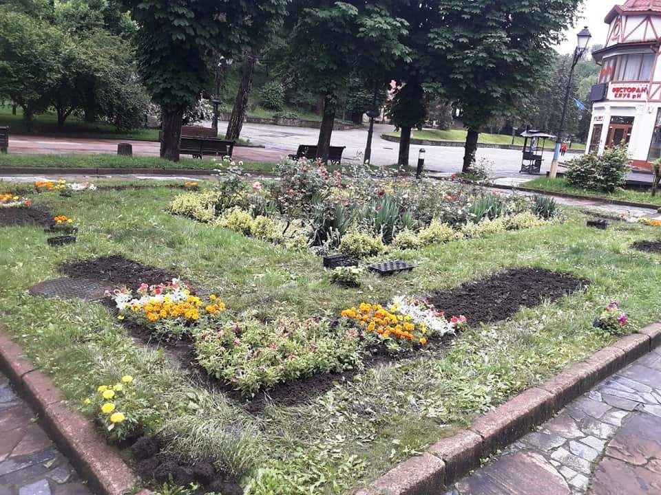 Квітковий Трускавець: місто-курорт озеленюють (Фото), фото-6, фото - Трускавецька міська рада