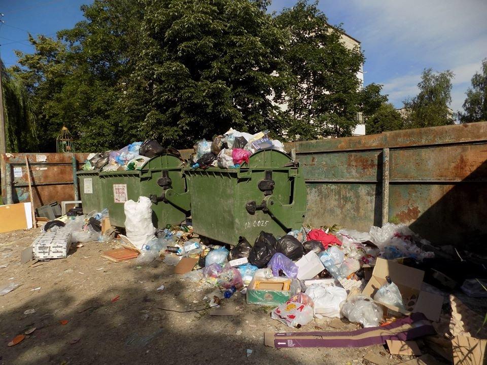 У Бориславі переповнені сміттєві контейнери (ФОТО), фото-5, фото - Бориславська міська рада