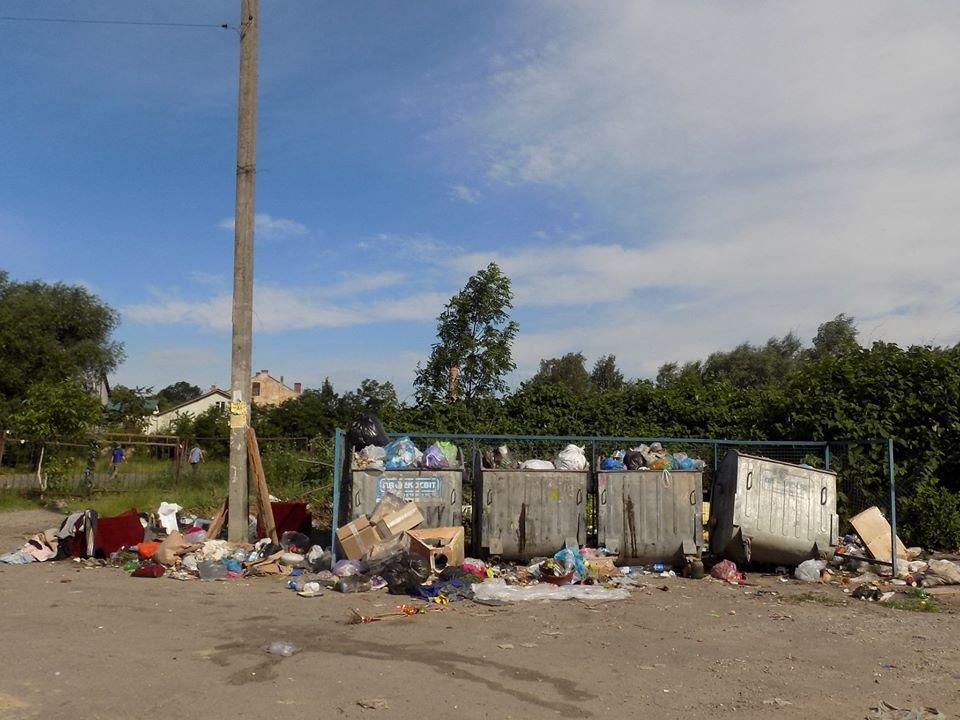 У Бориславі переповнені сміттєві контейнери (ФОТО), фото-3, фото - Бориславська міська рада