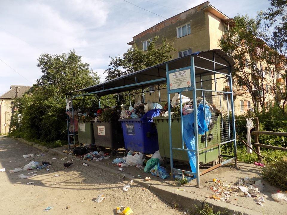 У Бориславі переповнені сміттєві контейнери (ФОТО), фото-8, фото - Бориславська міська рада