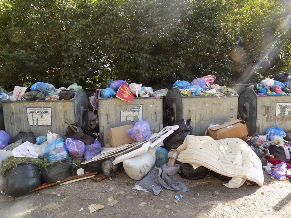 У Бориславі переповнені сміттєві контейнери (ФОТО), фото-9, фото - Бориславська міська рада