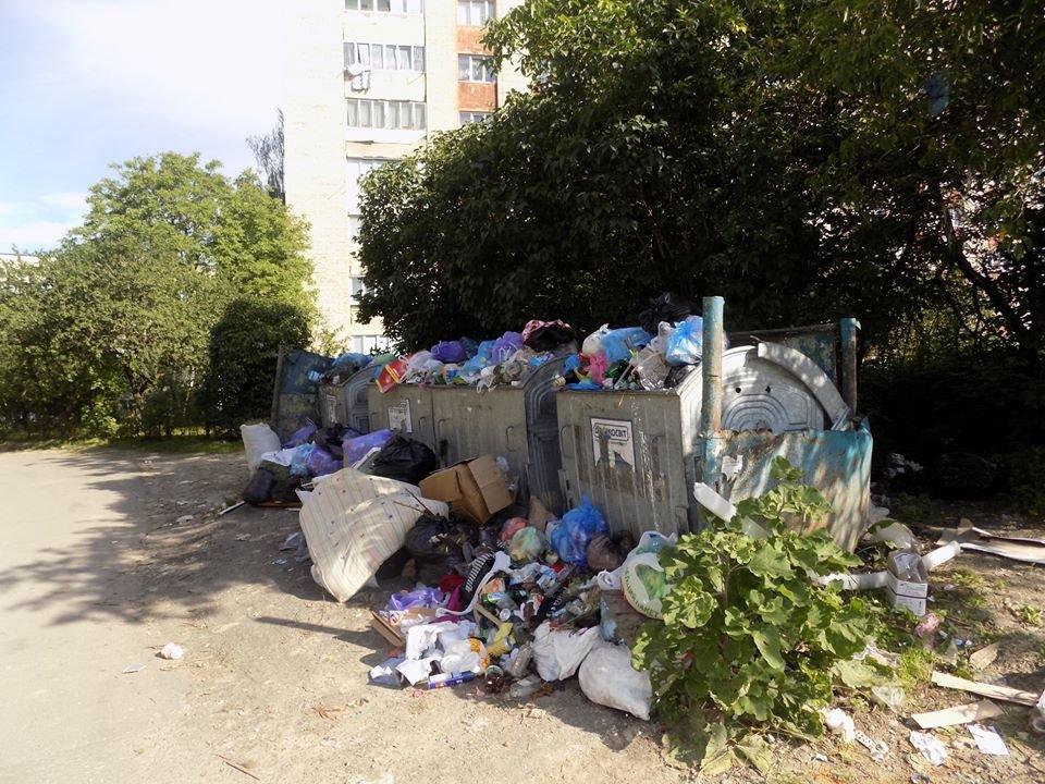 У Бориславі переповнені сміттєві контейнери (ФОТО), фото-6, фото - Бориславська міська рада