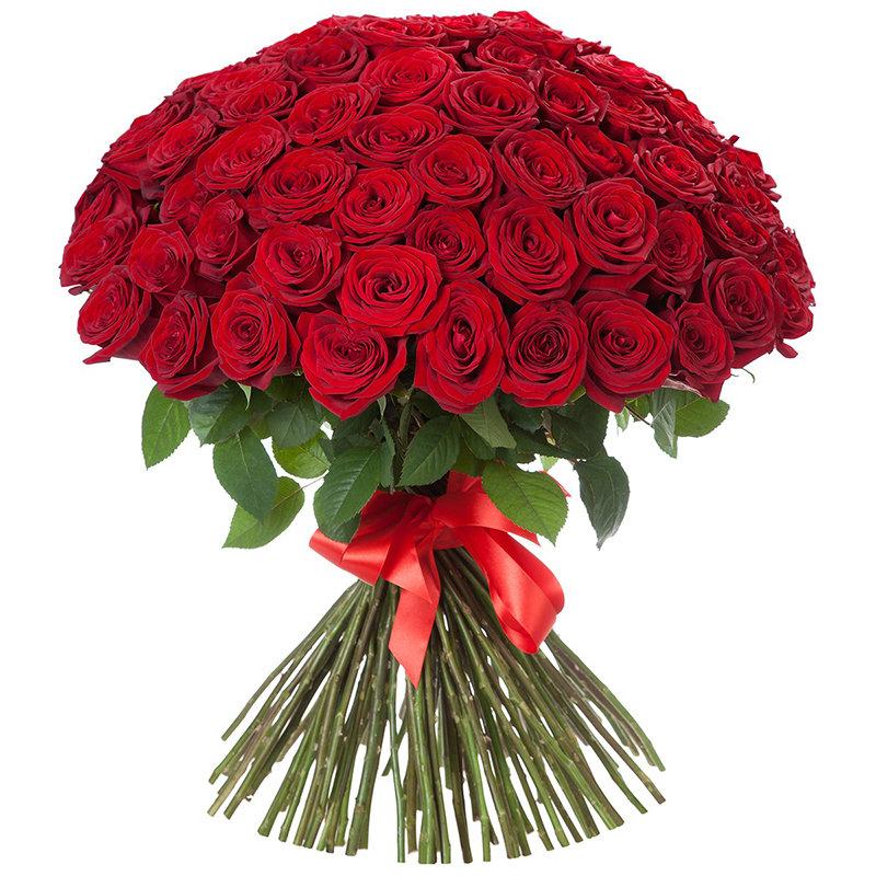 101 красная роза в киеве